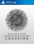 Blackwood Crossing (2017)